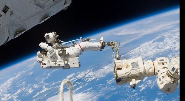 Stazione internazionale attaccata da insetti spaziali, allarme Nasa: «Corrodono il metallo»