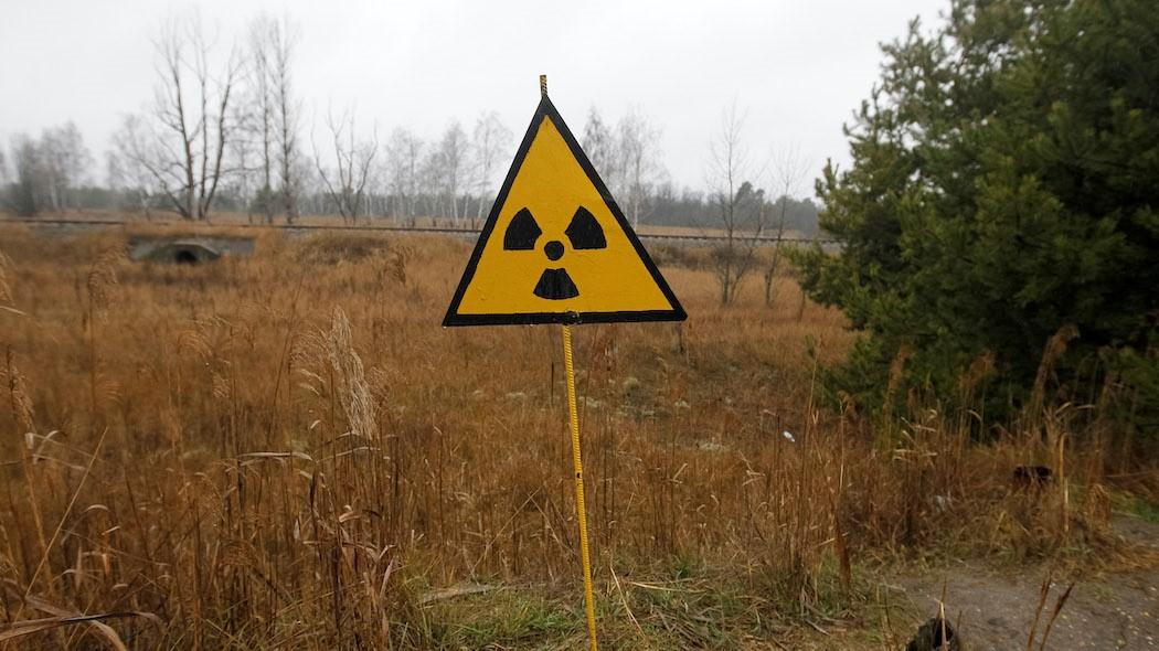 Grazie a un fungo cresciuto a Chernobyl potremmo riuscire a sopravvivere su Marte